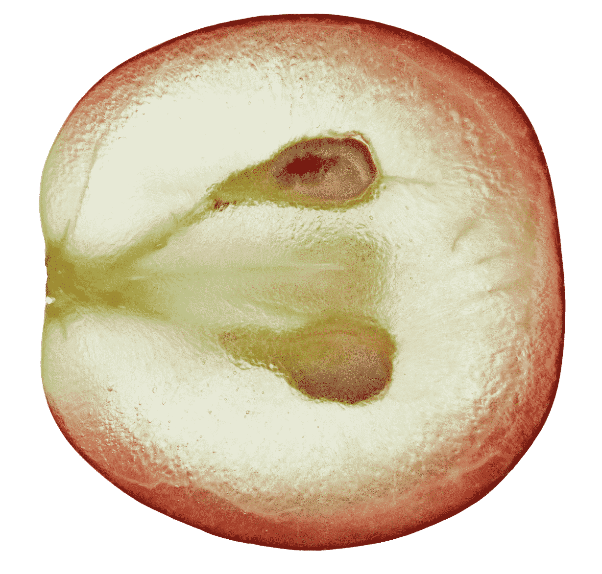 Traube-Rot N°008 Rosé Cristal